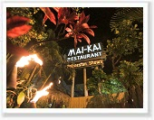 Mai Kai Dinner Show Attraction