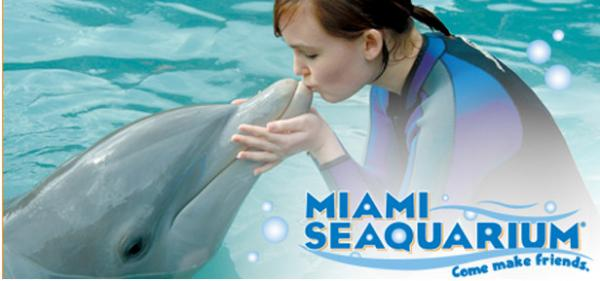 What is the biggest saving you can make on Miami Seaquarium? The biggest saving reported by our customers is $ How much can you save on Miami Seaquarium using coupons? Our customers reported an average saving of $ Is Miami Seaquarium offering BOGO deals and coupons? Yes, Miami Seaquarium has 2 active BOGO offers.